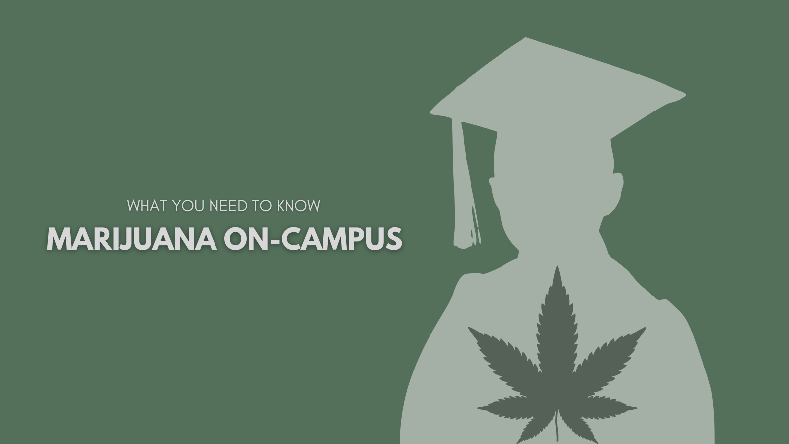 Going to College in a State Where Marijuana Isn't Legal